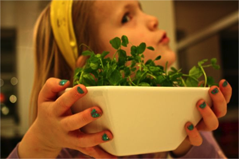 Remedy for a Picky Eater | TheFresh20 blog